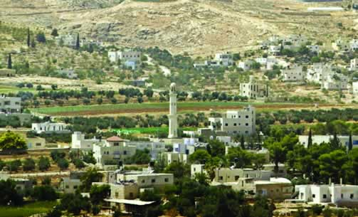 MOSQUE AND MINARET, Village of Teqoa, south-east of Bethlehem, Palestine. (Contributor: Shimon Dotan)
